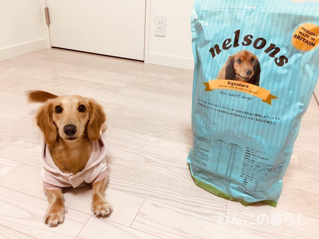 ネルソンズ犬